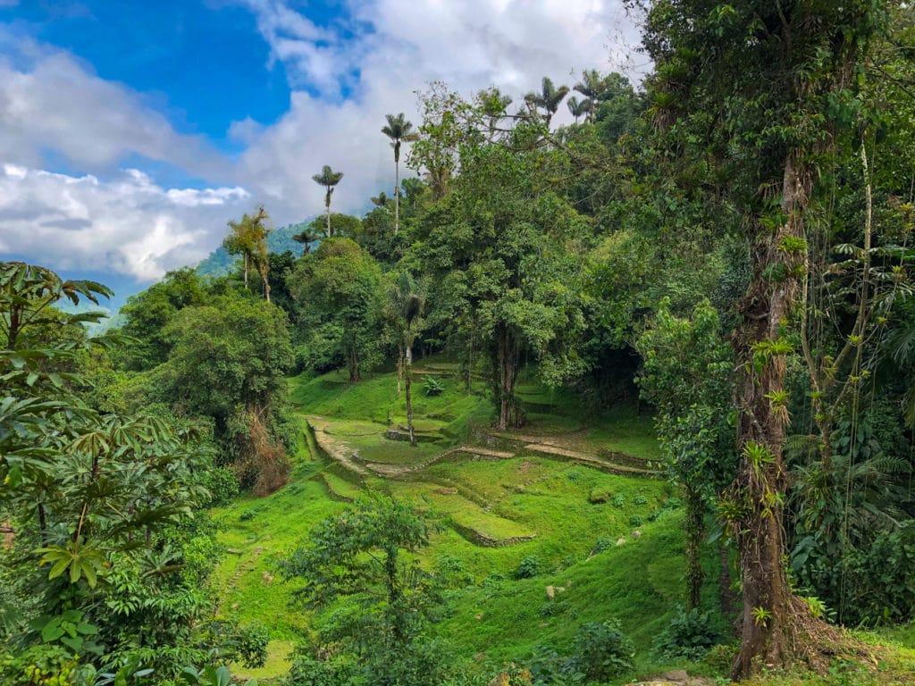 Hidden Terraces in La Ciudad Perdida, Colombia.
