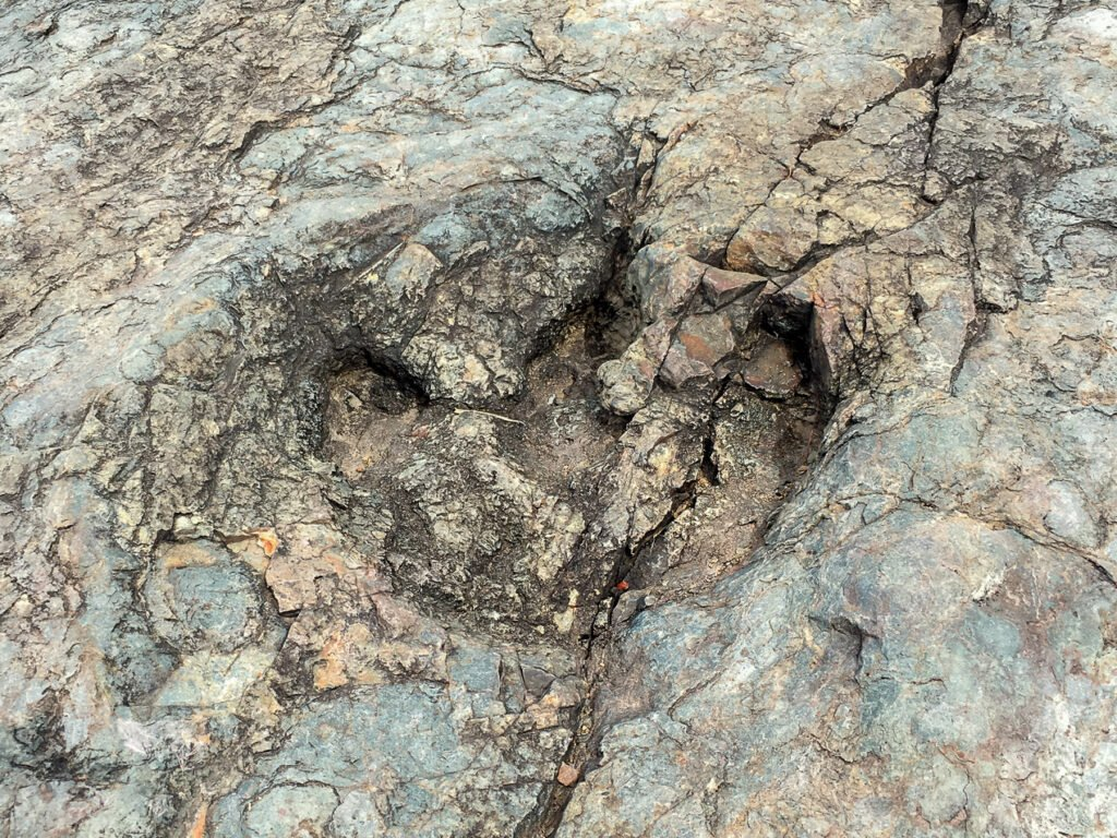 Large Dinosaur Footprint on the Hike to Maragua Crater in Bolivia