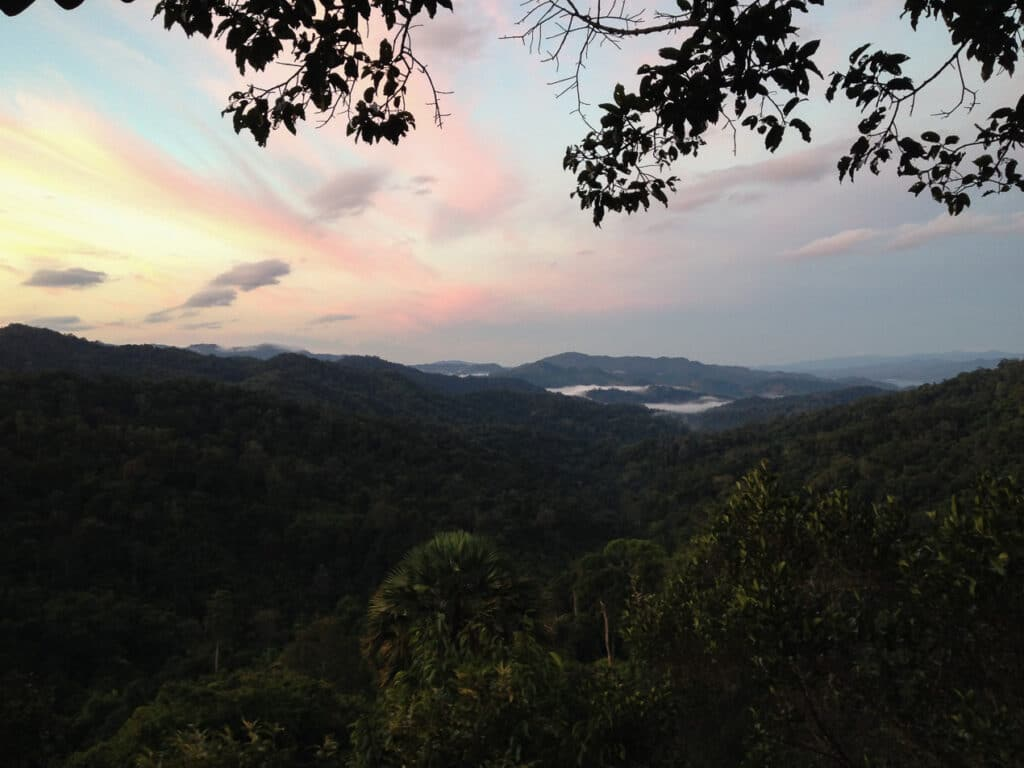 Sunrise over the Jungle during the Gibbon Experience in Laos