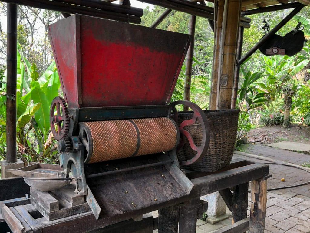 Coffee Bean Peeler in Salento Colombia f