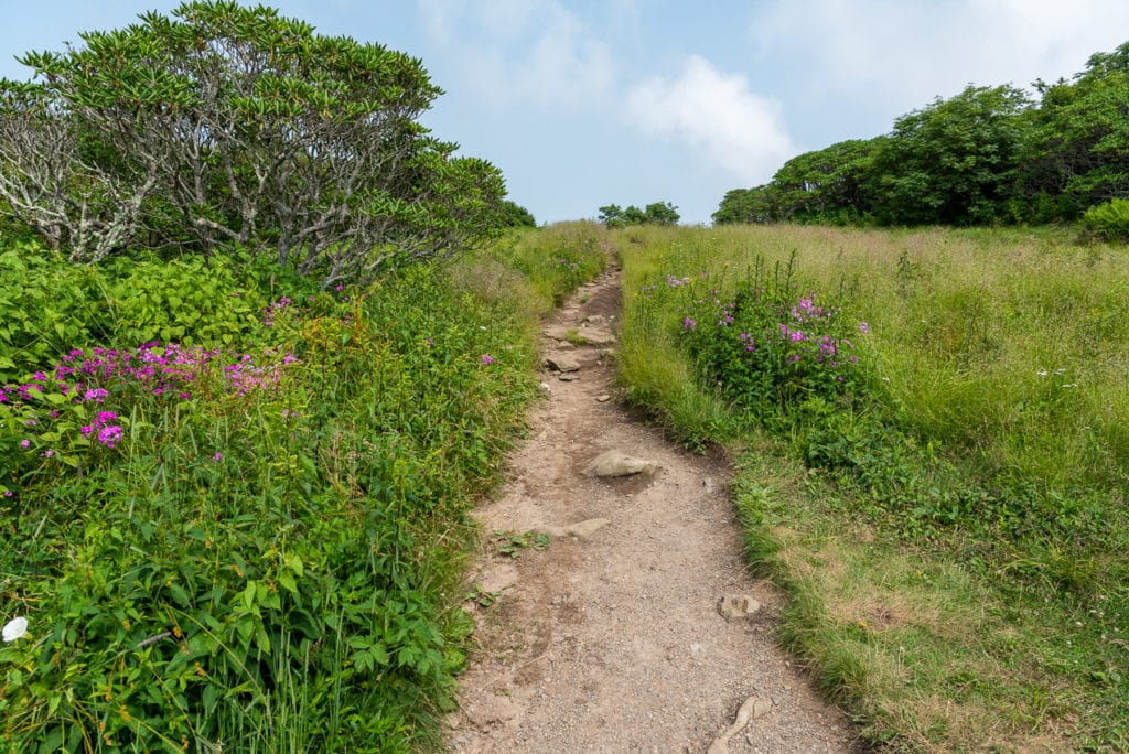 Craggy Gardens Trail on the Blue Ridge Parkway